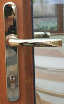 gold door handle on woodgrain door