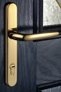 gold lever handle